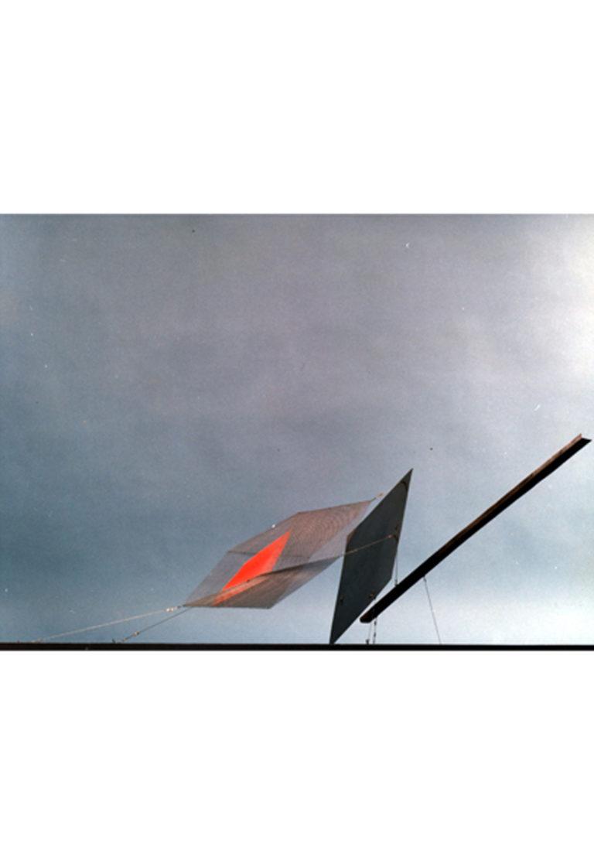 Sculpture static flight coloured Thierry Vidé Design